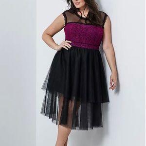 Torrid Insider Lace & Mesh Skater Dress